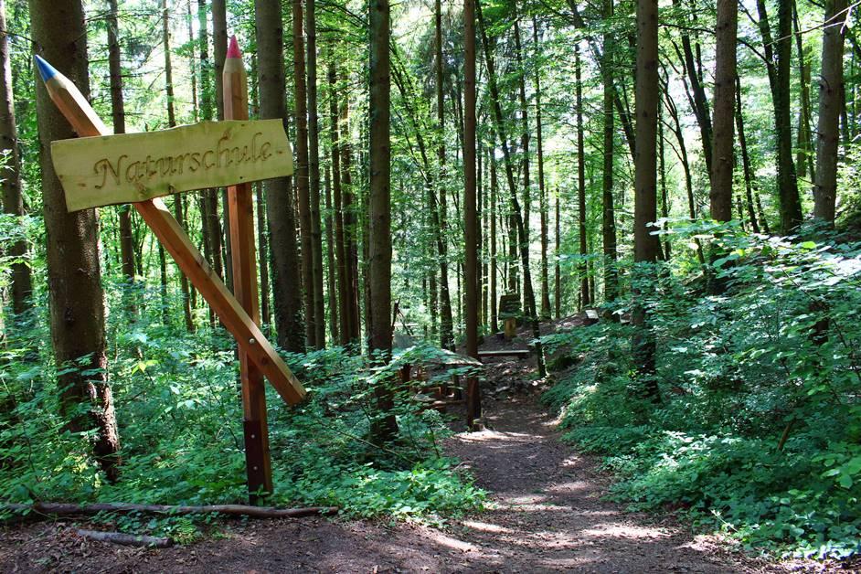 Hademar Naturerlebnispfad in Oberharmersbach mit Naturschule