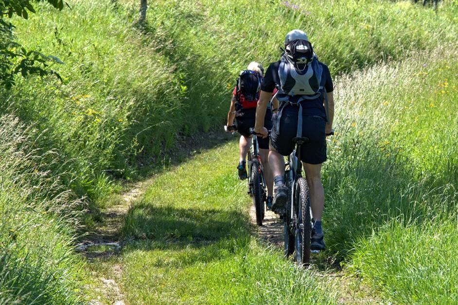2 Radfahrer auf Feld- und Wiesenweg im Schwarzwald