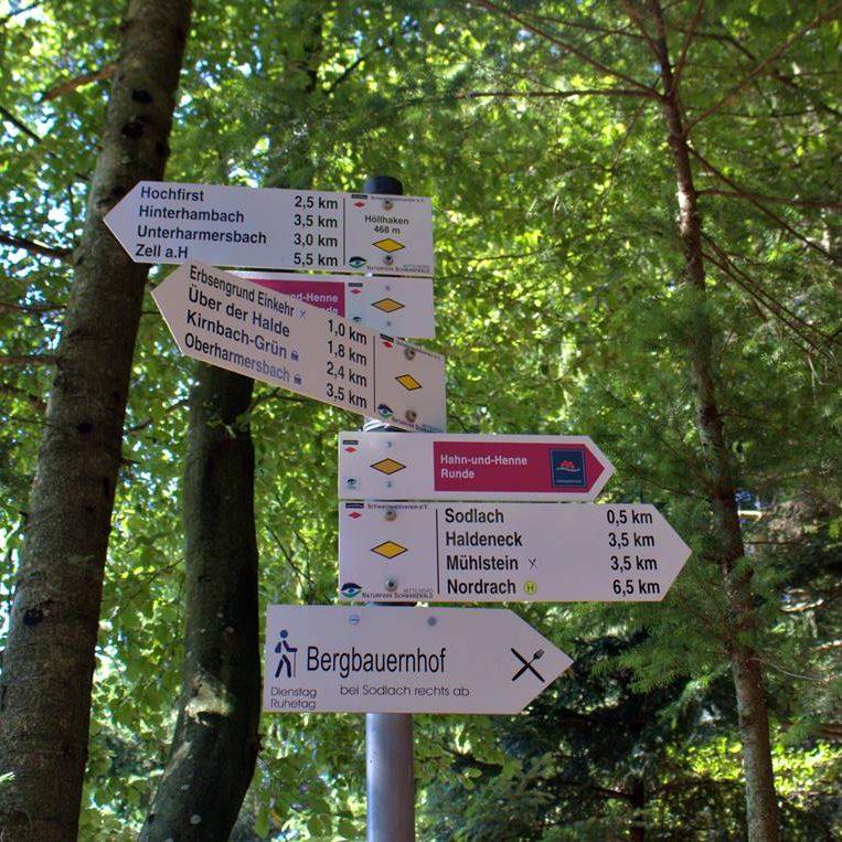 Wanderbeschilderung am Hahn und Henne Weg in Unterharmersbach